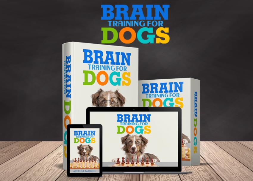 Brain training for dogs.jpeg